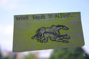 deluxe-paarde-in-action.jpg