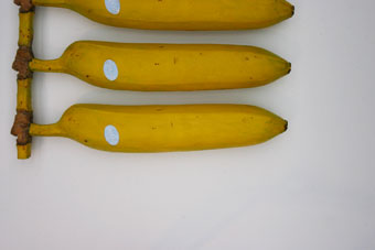 straight-banana