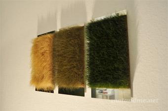 pure-by-grassland